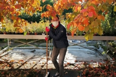 llego el otoño 20