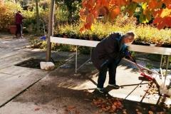 llego el otoño 1