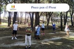Paseo-Pinar-portada
